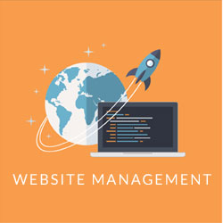 Website-Management