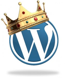 Wordpress Websites the first choice for business
