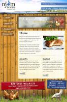 Website Design for Chicken!